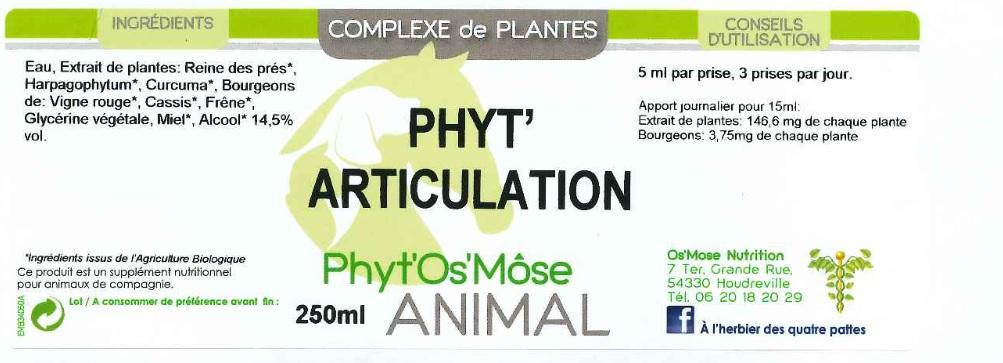 phyt articulation animal