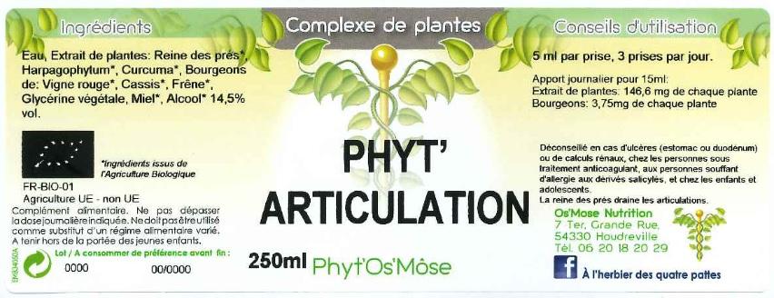 phyt'articulation humain