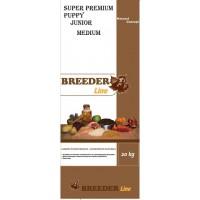 sp puppy médium Breeder line
