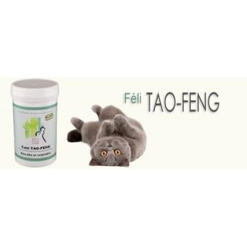 Feli TAO-FENG coryza 100 Gelules ( 25gr)