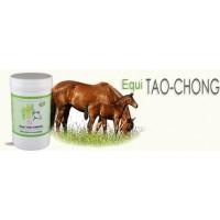 Equi TAO-CHONG aide a la  vermifugation pot 120 Gr