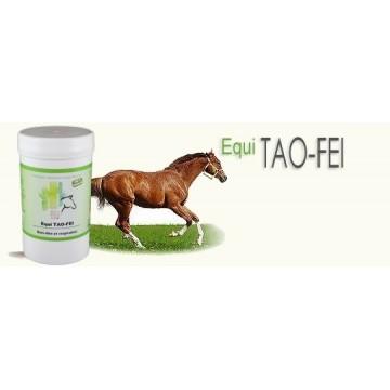 Equi TAO-FEI emphyseme pot 120 Gr