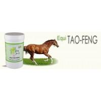 Equi TAO-FENG infection ORL pot 120 Gr