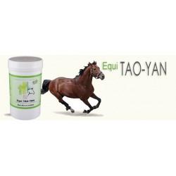 Equi TAO-YAN fourbure  pot 120 Gr