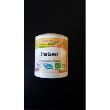 Shatavari bio gel 465mg / gel Boite de 60 gel