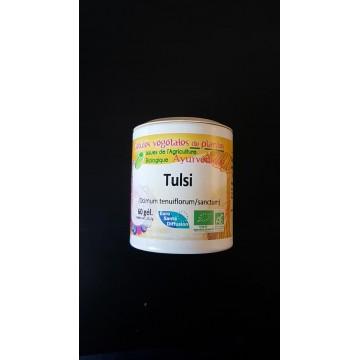 Tulsi / basilic sacré bio gel 370mg / gel Boite de 60 gel