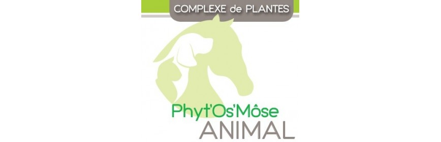 Phyt'Os'Môse animal