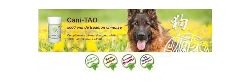 Cani Tao