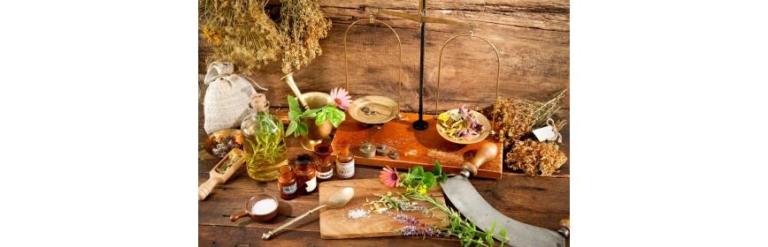 Nutrithérapie végétale