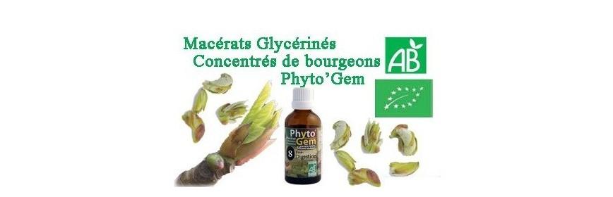 phyto gem